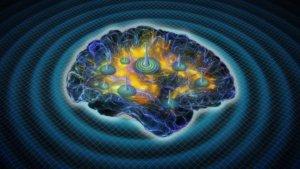 News_brainwaves_Ivanov_updated