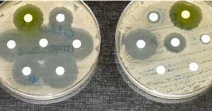 News_antibioticresistance